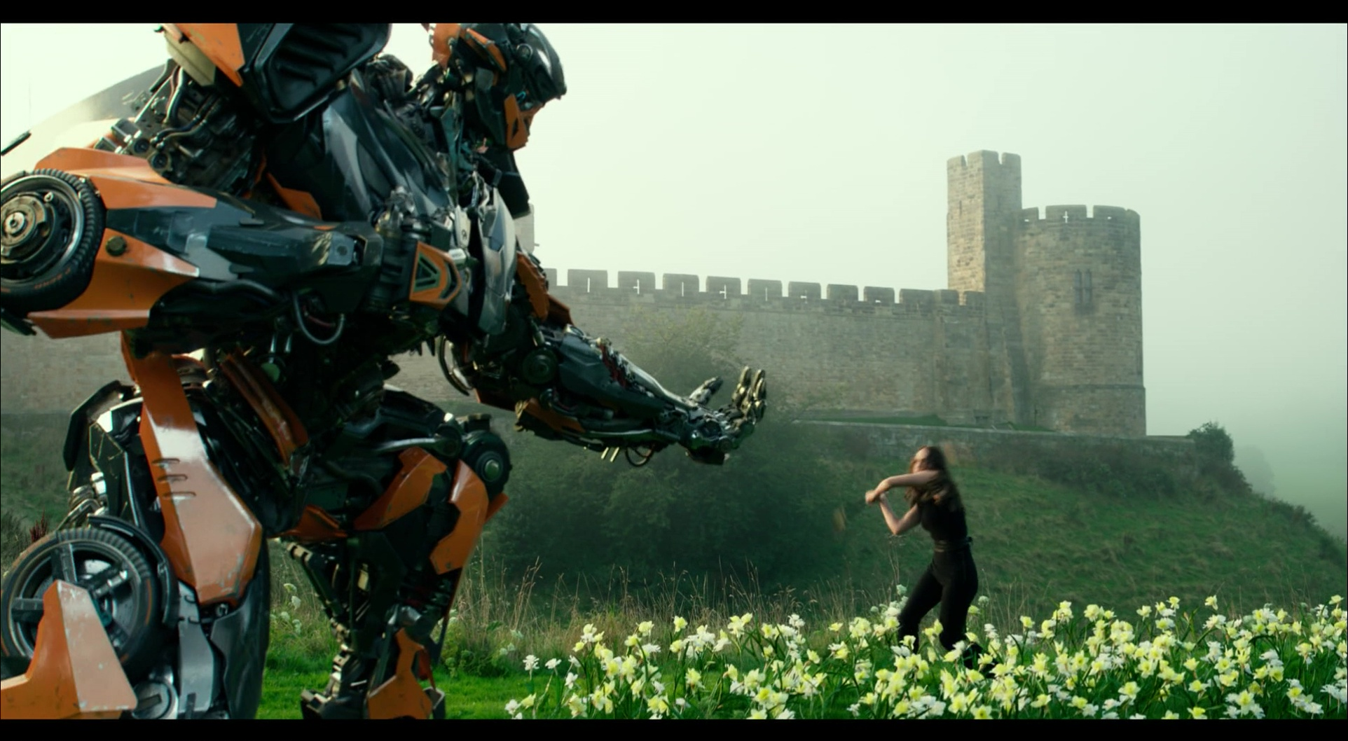 Hot Rod in Autobot form holding hand out to woman in field of flowers
